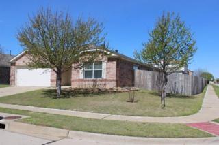 1411  Dundee Drive  , Arlington, TX 76002 (MLS #13097952) :: DFWHomeSeeker.com