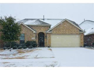 10409  Flat Creek Trail  , Mckinney, TX 75070 (MLS #13101197) :: The Tierny Jordan Team