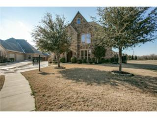 8117  Seville Drive  , North Richland Hills, TX 76182 (MLS #13102648) :: DFWHomeSeeker.com