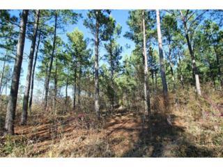 58  Fm 269  , Pickton, TX 75471 (MLS #13104194) :: Robbins Real Estate