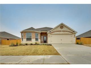 411  Lipizzan Lane  , Celina, TX 75009 (MLS #13105042) :: Homes By Lainie Team