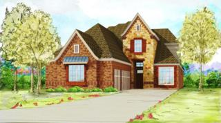 4461  Vineyard Creek Drive  , Grapevine, TX 76051 (MLS #13114335) :: DFWHomeSeeker.com