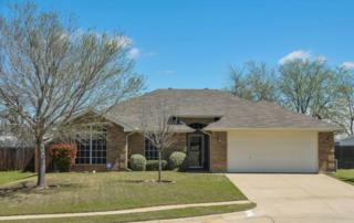 992  Mesa Vista Drive  , Crowley, TX 76036 (MLS #13117347) :: The Tierny Jordan Team