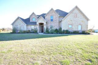 5007  High Plains Court  , Fort Worth, TX 76179 (MLS #13117972) :: DFWHomeSeeker.com