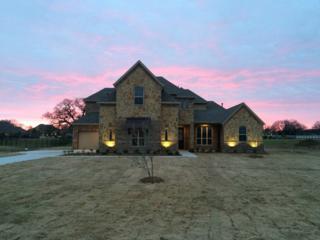 104  Diamond Rose Drive  , Burleson, TX 76028 (MLS #13118501) :: DFWHomeSeeker.com