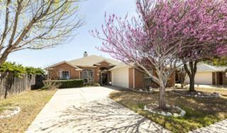 8015  Shoshoni Drive  , Arlington, TX 76002 (MLS #13118566) :: DFWHomeSeeker.com