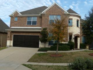 6209  Prairie Vista Drive  , Arlington, TX 76001 (MLS #13118943) :: DFWHomeSeeker.com