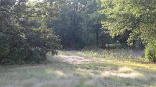 000  Lakeshore Drive  , Reno, TX 75462 (MLS #13121330) :: Real Estate By Design