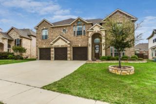 403  Buttercup Court  , Mansfield, TX 76063 (MLS #13127878) :: DFWHomeSeeker.com
