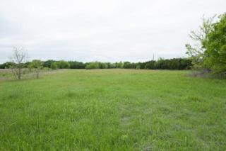 56  Gray Lane  , Sherman, TX 75090 (MLS #13133120) :: Homes By Lainie Team