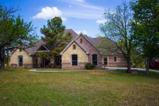 2284  Fm 2048  , Boyd, TX 76023 (MLS #13138184) :: Robbins Real Estate