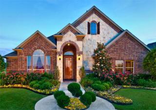 2716  Hammock Lake Drive  , Little Elm, TX 75068 (MLS #13146278) :: Team Tiller