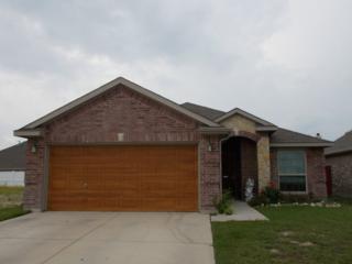 7341  Tin Star Drive  , Fort Worth, TX 76179 (MLS #13148994) :: The Tierny Jordan Team