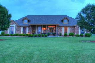 7229  County Road 1205  , Rio Vista, TX 76093 (MLS #13149664) :: Real Estate By Design
