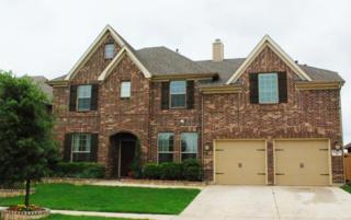 5229  Wheat Sheaf Trail  , Fort Worth, TX 76179 (MLS #13152676) :: Team Tiller