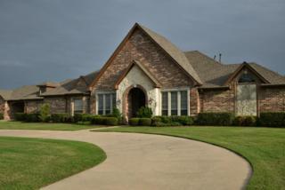 405  Lago Circle  , Heath, TX 75032 (MLS #13157397) :: The Tierny Jordan Team