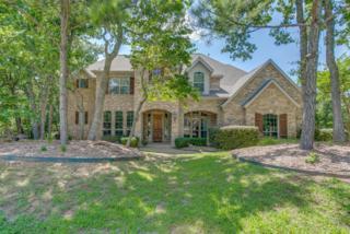 3503  Sarah Springs Trail  , Flower Mound, TX 75022 (MLS #13184831) :: Carrington Real Estate Services