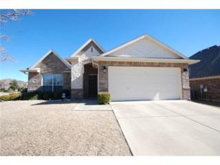 1204  Cedar Branch Drive  , Wylie, TX 75098 (MLS #13084354) :: Robbins Real Estate