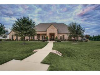 2881  Silverglade Court  , Prosper, TX 75078 (MLS #13045414) :: Lisa Birdsong Realty Group
