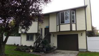 5541  34th St Lp NE , Tacoma, WA 98422 (#705019) :: Exclusive Home Realty