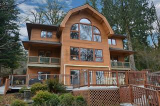 16701  19th St Ct Kps St  , Lakebay, WA 98349 (#730397) :: Priority One Realty Inc.