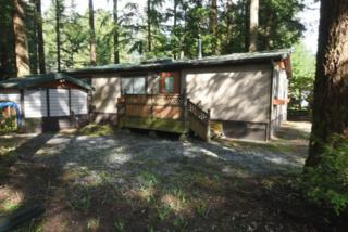 6246  Limerick Wy  , Maple Falls, WA 98266 (#756030) :: Home4investment Real Estate Team