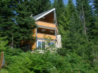 940  Snoqualmie Dr  , Snoqualmie Pass, WA 98068 (#739695) :: FreeWashingtonSearch.com