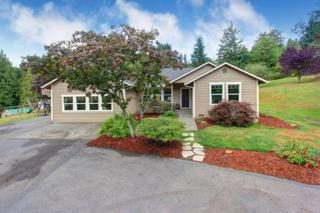 31850 NE 183rd St  , Duvall, WA 98019 (#682136) :: Exclusive Home Realty