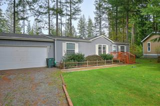 8334  Beaver Ct  , Maple Falls, WA 98266 (#711113) :: Home4investment Real Estate Team