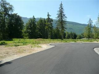 0-Lot 18  Coyote Springs Lane  , Sedro Woolley, WA 98284 (#336354) :: Home4investment Real Estate Team