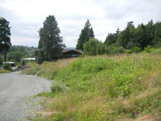 10419 NE 43rd St  , Kirkland, WA 98033 (#377752) :: Exclusive Home Realty