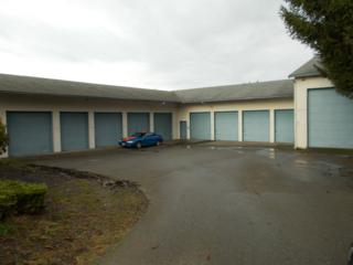 1601 SE Salmonberry Rd  , Port Orchard, WA 98366 (#429687) :: Exclusive Home Realty