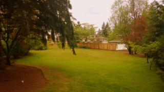 2611  244th Ave NE , Sammamish, WA 98074 (#519202) :: Exclusive Home Realty