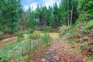 15300 NE 173RD St  Lot 1, Woodinville, WA 98072 (#545630) :: Exclusive Home Realty