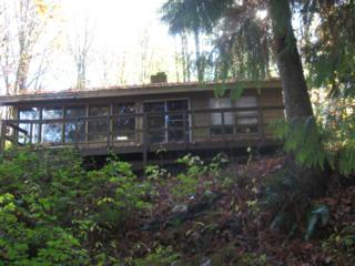27881 W Gilligan Creek Rd  , Sedro Woolley, WA 98284 (#562605) :: Home4investment Real Estate Team