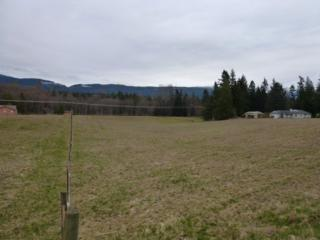 0  Pinelli Rd  , Sedro Woolley, WA 98284 (#606503) :: Home4investment Real Estate Team