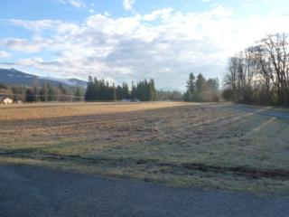 0  Pinelli Rd  , Sedro Woolley, WA 98284 (#606518) :: Home4investment Real Estate Team