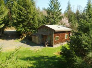13042  Janicki Rd  , Sedro Woolley, WA 98284 (#610988) :: Home4investment Real Estate Team