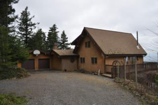 1669  Day Lake Rd  , Orcas Island, WA 98245 (#626631) :: Home4investment Real Estate Team