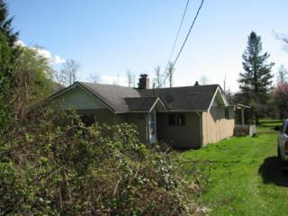 23868  Old Day Creek Rd  , Sedro Woolley, WA 98284 (#634680) :: Home4investment Real Estate Team