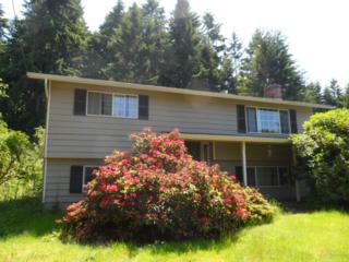 12923 SE 95th Wy  , Renton, WA 98056 (#639167) :: Exclusive Home Realty