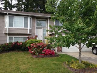 6103  Sycamore Lane NE , Bremerton, WA 98311 (#642445) :: Exclusive Home Realty