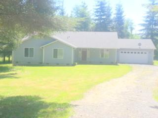 11228  Langworthy Rd SW , Rochester, WA 98579 (#642863) :: Home4investment Real Estate Team