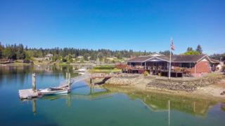 3717  Picnic Point Dr NW , Gig Harbor, WA 98335 (#662613) :: Nick McLean Real Estate Group