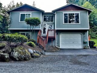 737  Summerset Wy  , Sedro Woolley, WA 98284 (#663592) :: Home4investment Real Estate Team