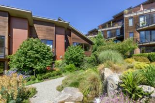 712 NE Vineyard Lane  , Bainbridge Island, WA 98110 (#664144) :: Exclusive Home Realty