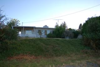 6059  Hatton Place  , Ferndale, WA 98248 (#665154) :: Home4investment Real Estate Team
