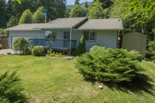 757  Sumerset Wy  , Sedro Woolley, WA 98284 (#666329) :: Home4investment Real Estate Team