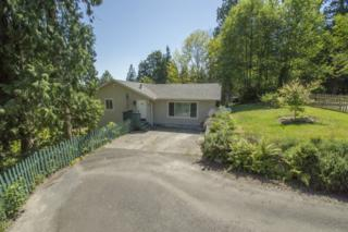 3055  Huckleberry Lane  , Sedro Woolley, WA 98284 (#666754) :: Home4investment Real Estate Team