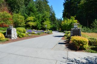 26555 SE Grand Ridge Dr  , Issaquah, WA 98029 (#666924) :: Exclusive Home Realty